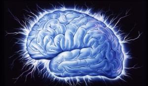 gaba brain image